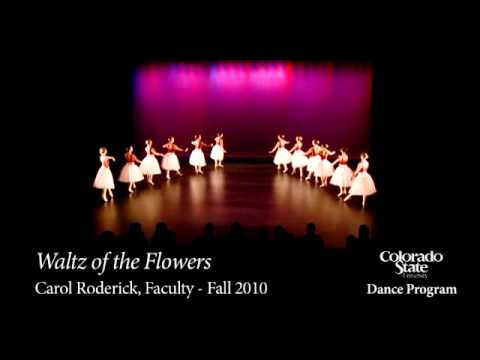 Colorado State University Dance Program I