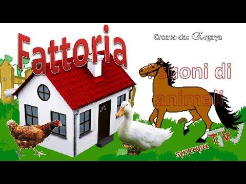 Suoni di animali per bambini fattoria youtube - Animali terrestri per bambini ...