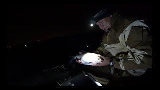 #2 Ночная Рыбалка Осенью с Лодки на Течении Реки. Ловля Леща на Кольцо с Лодки ПВХ