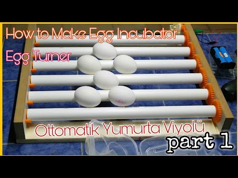 DIY Egg Incubator