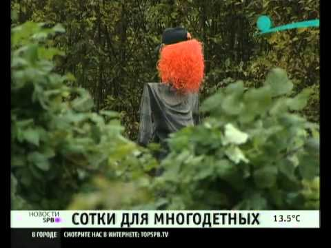 Многодетным семьям СПб выделят Ржевский полигон?