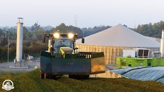 HUGE SILAGE TRENCH | Claas Axion 850 |Agromeccanica Assanelli | ᴴᴰ