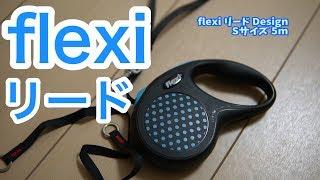 flexi フレキシリード Design デザイン テープ 5m (S, ブルー) [並行輸...