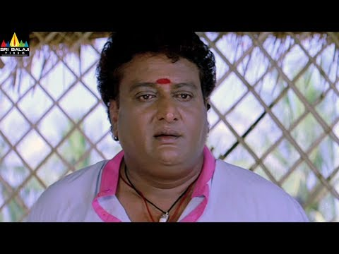 Mangatayaru Tiffin Center Movie Prudhvi Comedy With Mumaith Khan   Sri Balaji Video
