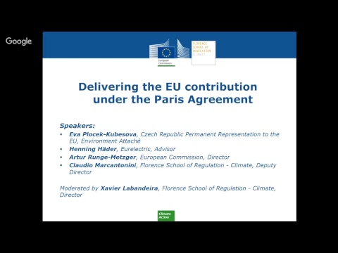 EUI/EU: Implementing the EU 2030 climate and energy package and the Energy Union at large