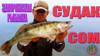 Ловля СУДАКА и СОМА на ДЕШЕВЫЙ СИЛИКОН Запорожская рыбалка