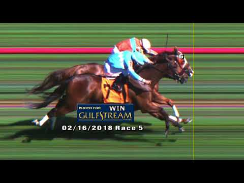 Gulfstream Park Replay Show | February 16, 2018