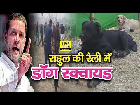 Rahul Gandhi Patna Rally में पहुंच गया है Dog Squad, Gandhi Maidan के चप्पे- चप्पे की गहन तलाशी
