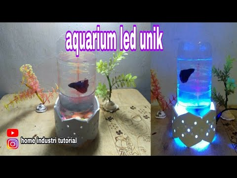 Diy Aquarium Ikan Cupang Unik Dari Botol Dengan Memadukan Lampu Hias Pipa Paralon Youtube