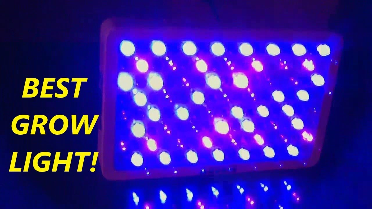 start grow with s equipment equipments first plant lights lighting right your plants fluorescent for garden indoor