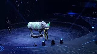 Шоу Братьев Запашных. Система 2. Носорог