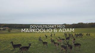 Dovviltsjakt med Markoolio & Adam Alsing