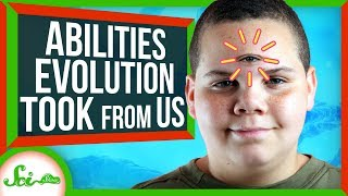 abilities-evolution-took-from-us