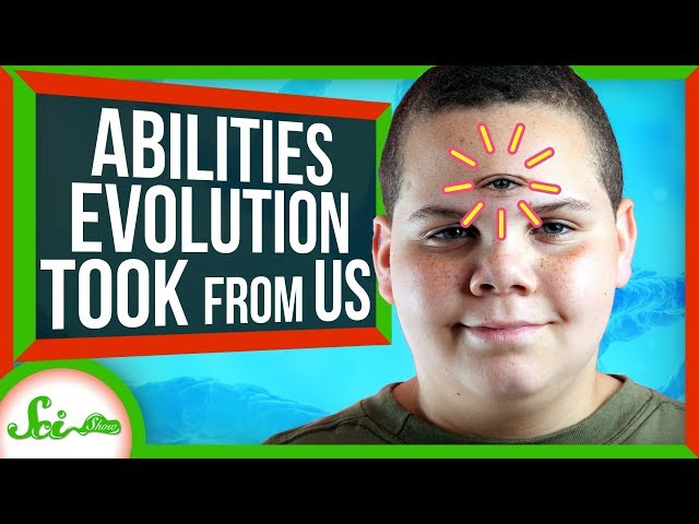 Abilities Evolution Took From Us
