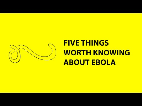 5 things worth knowing about the risks of Ebola