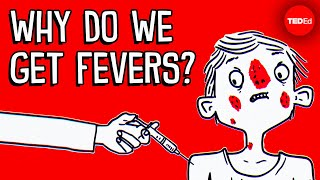 Why do you get a fever when you're sick? - Christian Moro
