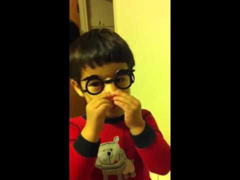 Ryan Groucho Glasses