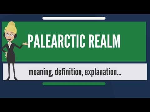 What Is PALEARCTIC REALM? What Does PALEARCTIC REALM Mean? PALEARCTIC REALM Meaning