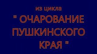 """"""" ОЧАРОВАНИЕ ПУШКИНСКОГО КРАЯ """" МУЗЕЙ-Усадьба ТРИГОРСКОЕ фильм"""
