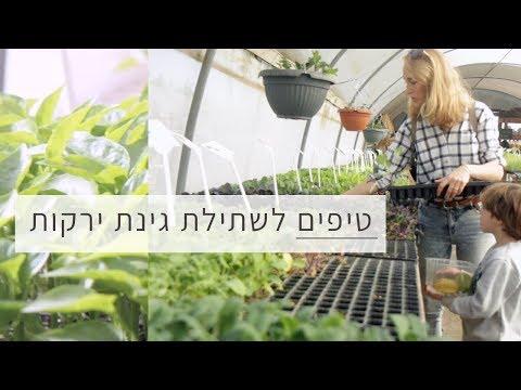 טיפים לשתילה של גינת ירקות ביתית