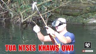 Tua Ntses Khaws Qwj Noj Ua Si Tom Hav Dej Lom Zem Kawg !! Hmong Net Fishing, Hmong Traditiona !!