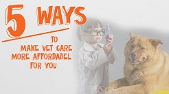 5 Strategies To Handle The Cost of Veterinary Care