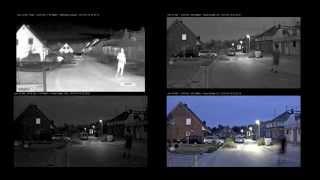 видео Axis P1354