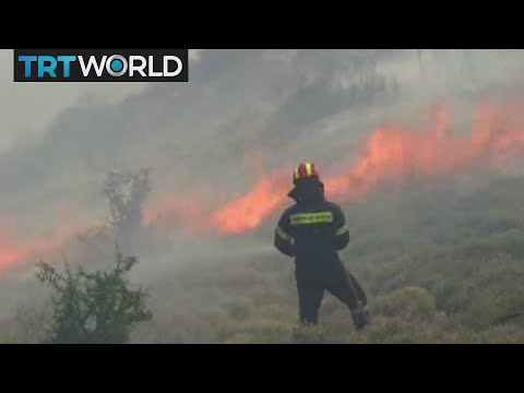 Greece Wildfires: State of emergency declared as wildfires burn