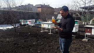 Подкормка ПЧЁЛ Весной!!!!!!!!!!