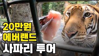 [윤수윤지] 에버랜드 20만원짜리 사파리 스페셜 투어 Everland Safari Special Tour (고프로 gopro)