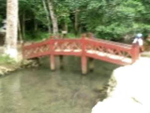 Suối cá thần làng Ngọc Cẩm Lương Cẩm Thủy Thanh Hóa
