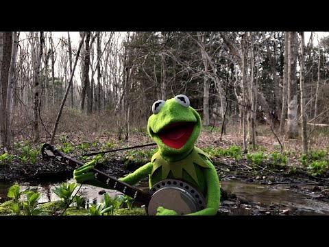 "a-special-performance-of-""rainbow-connection""-from-kermit-the-frog-
