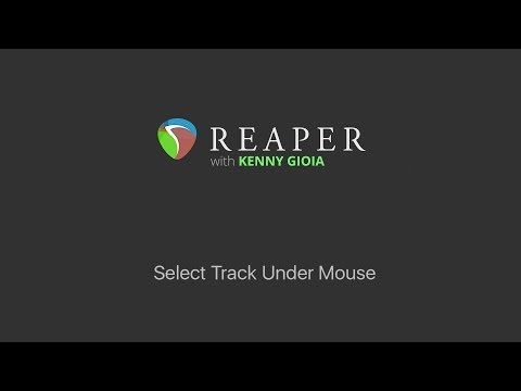 Select Track Under Mouse in REAPER