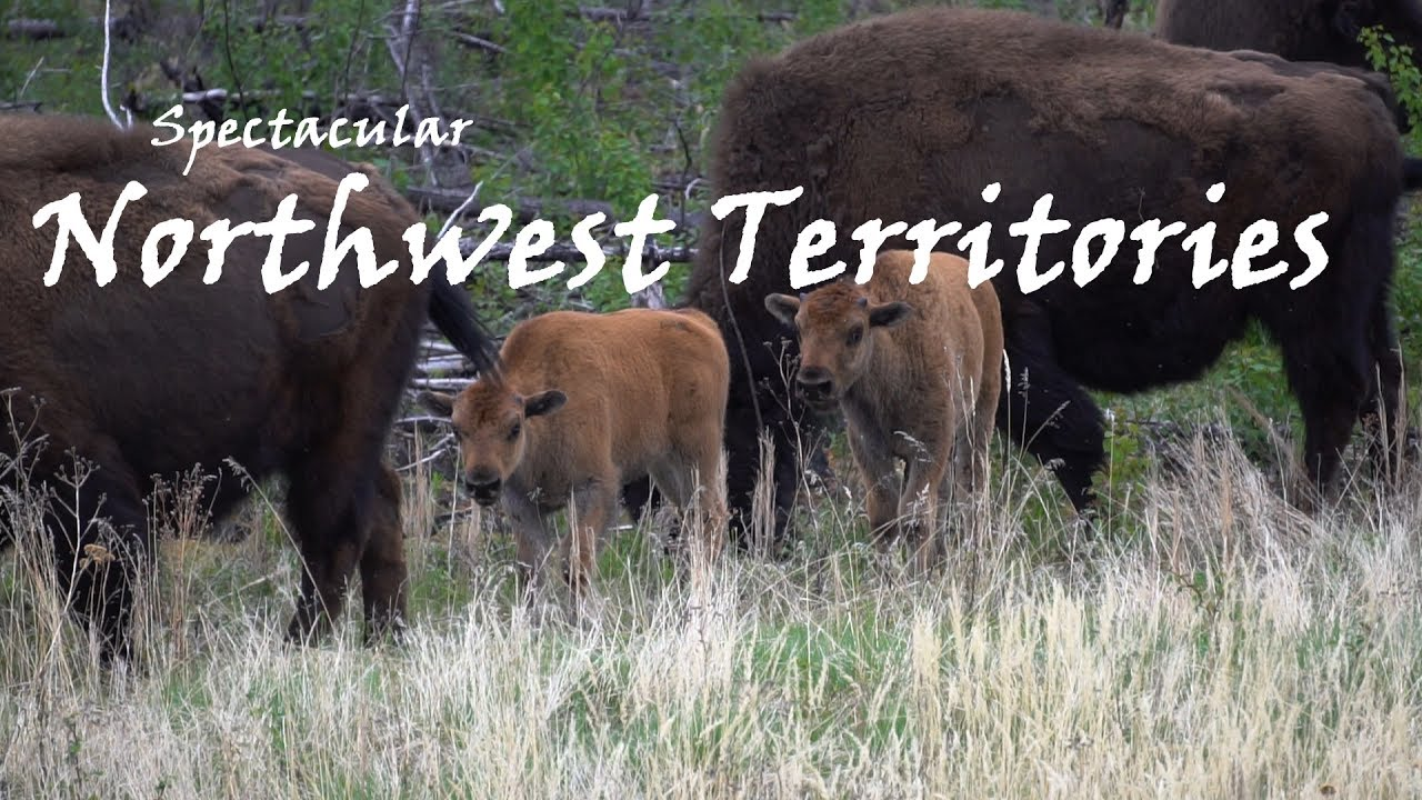 Video of the Week! Spectacular Northwest Territories