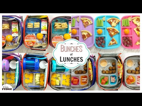 School Lunch Ideas || Bunches of Lunches Week 2 || The Family Fudge