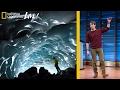 Stunning Cave Photography Illuminates an Unseen World | Nat Geo Live