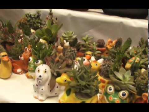 El jard n en miniatura youtube for Jardines en miniatura