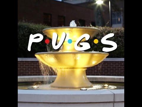 TV Show Compilation - Doug The Pug