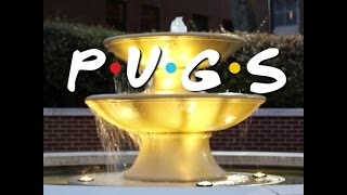 TV Show Compilation  Doug The Pug