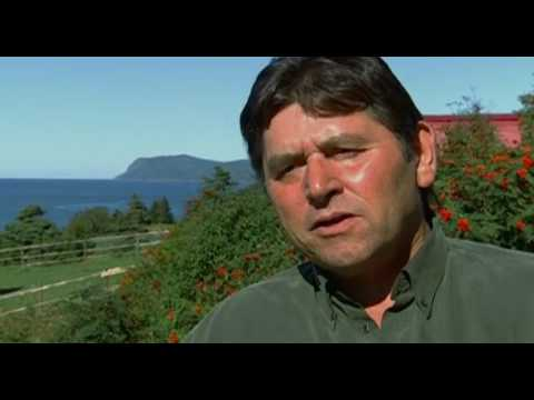 Social Anthropologist Elliott Leyton on Why Newfoundland's Murder Rate is So Low