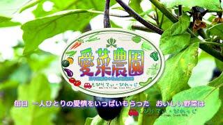 愛菜農園活動紹介と会員募集です。