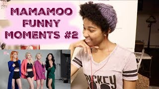 Mamamoo FUNNY MOMENTS #2 [MAMAMOO REACTION]