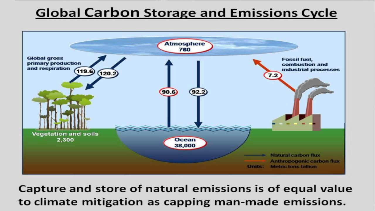 climate change mitigation Tackling climate change requires a rapid shift to low-carbon development by urgently reducing our greenhouse gas emissions, we can minimize how significantly climate change will impact our societies, economies and ecosystems.