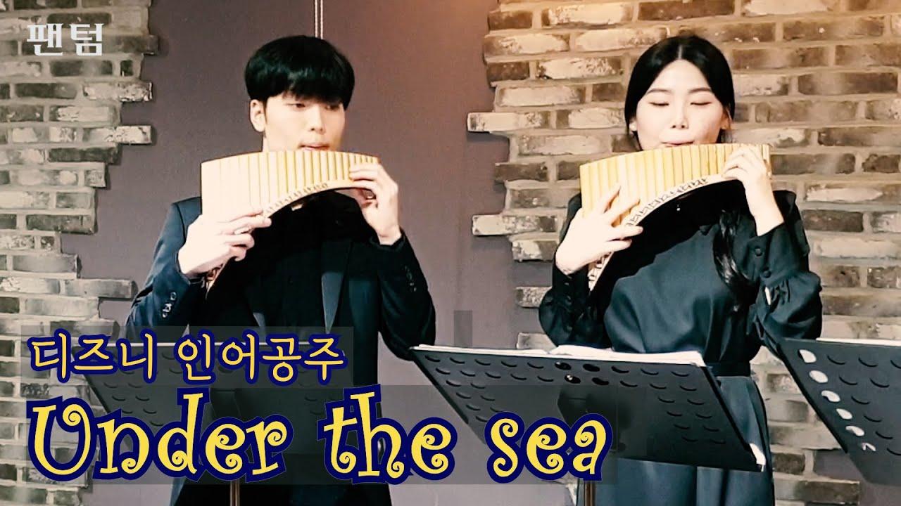 Under the sea│디즈니 인어공주 ♪ 팬플룻연주 (Panflute) / 팬텀 Pan-term