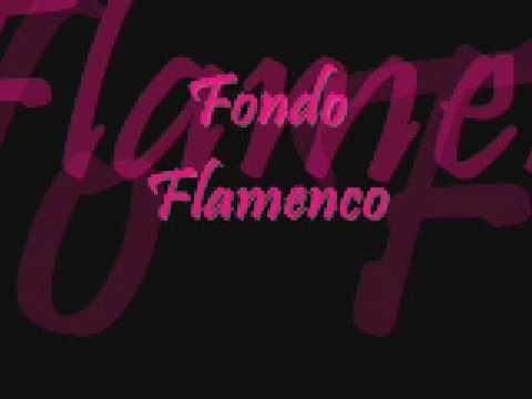 Fondo Flamenco-Mi Estrella Blanca