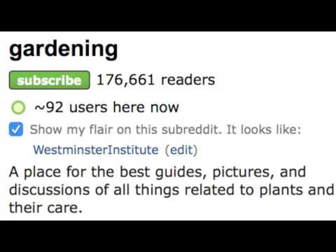 Reddit Marketing 2017 Tutorial