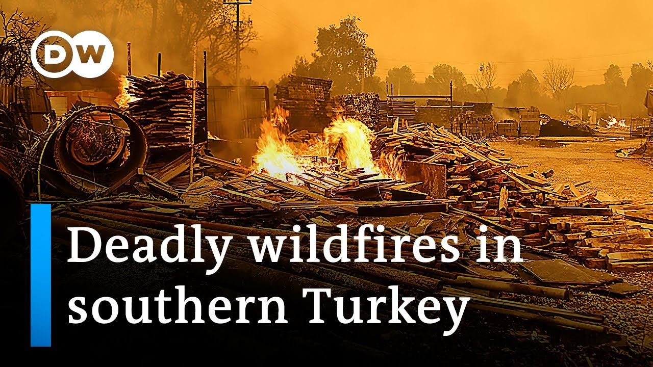 Download Three dead as wildfires blaze in southern Turkey | DW News