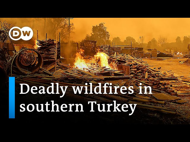 Three dead as wildfires blaze in southern Turkey | DW News