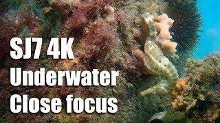 SJ7 4K Underwater Close Focus