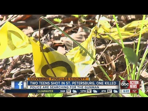 One teen dead, one wounded in St Petersburg shooting